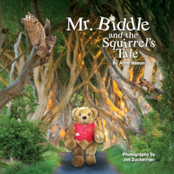 Mr Biddle and the Squirrels Tale.jpg