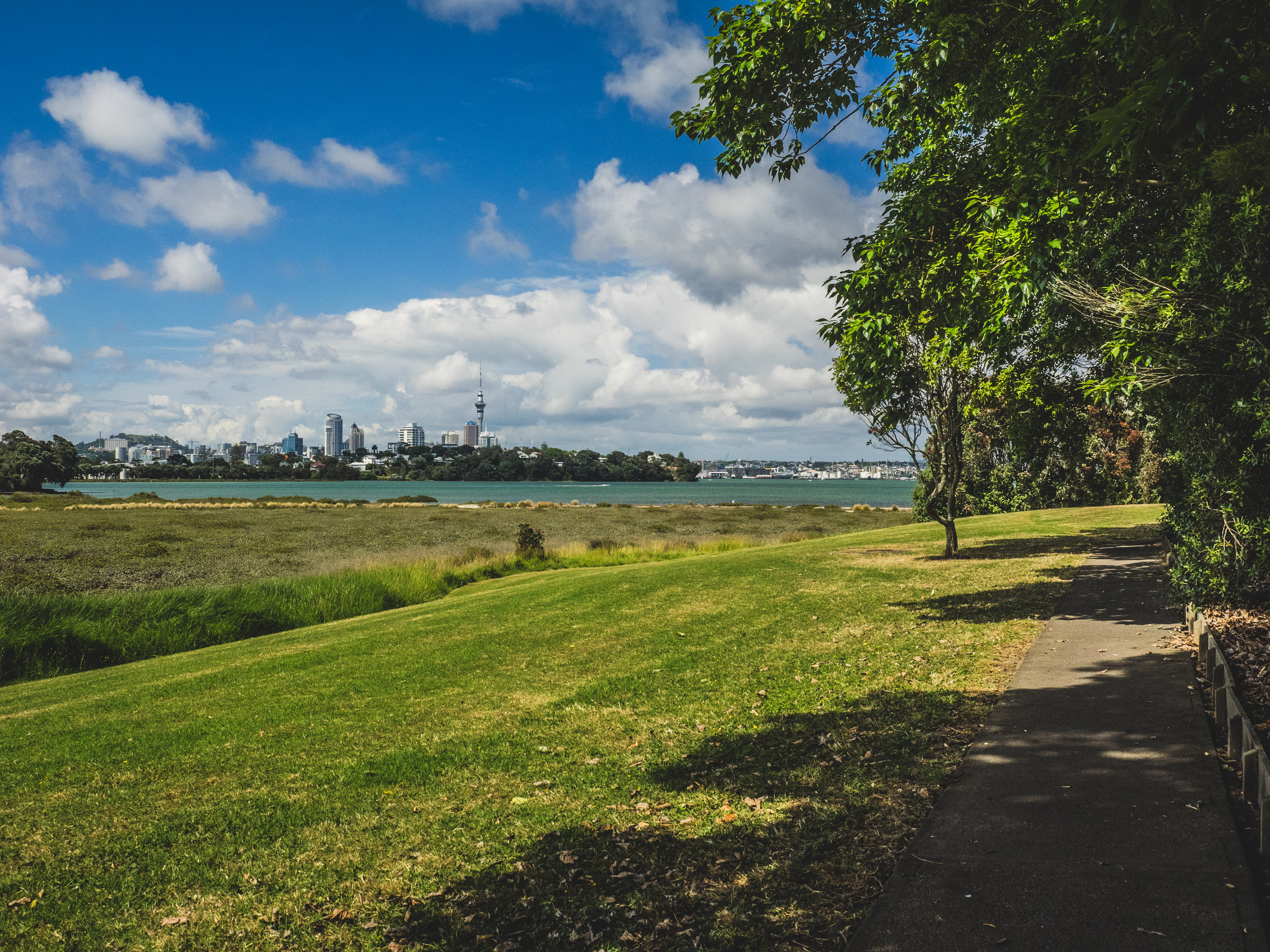 Downtown Auckland from the walking path between Bayswater and Devonport