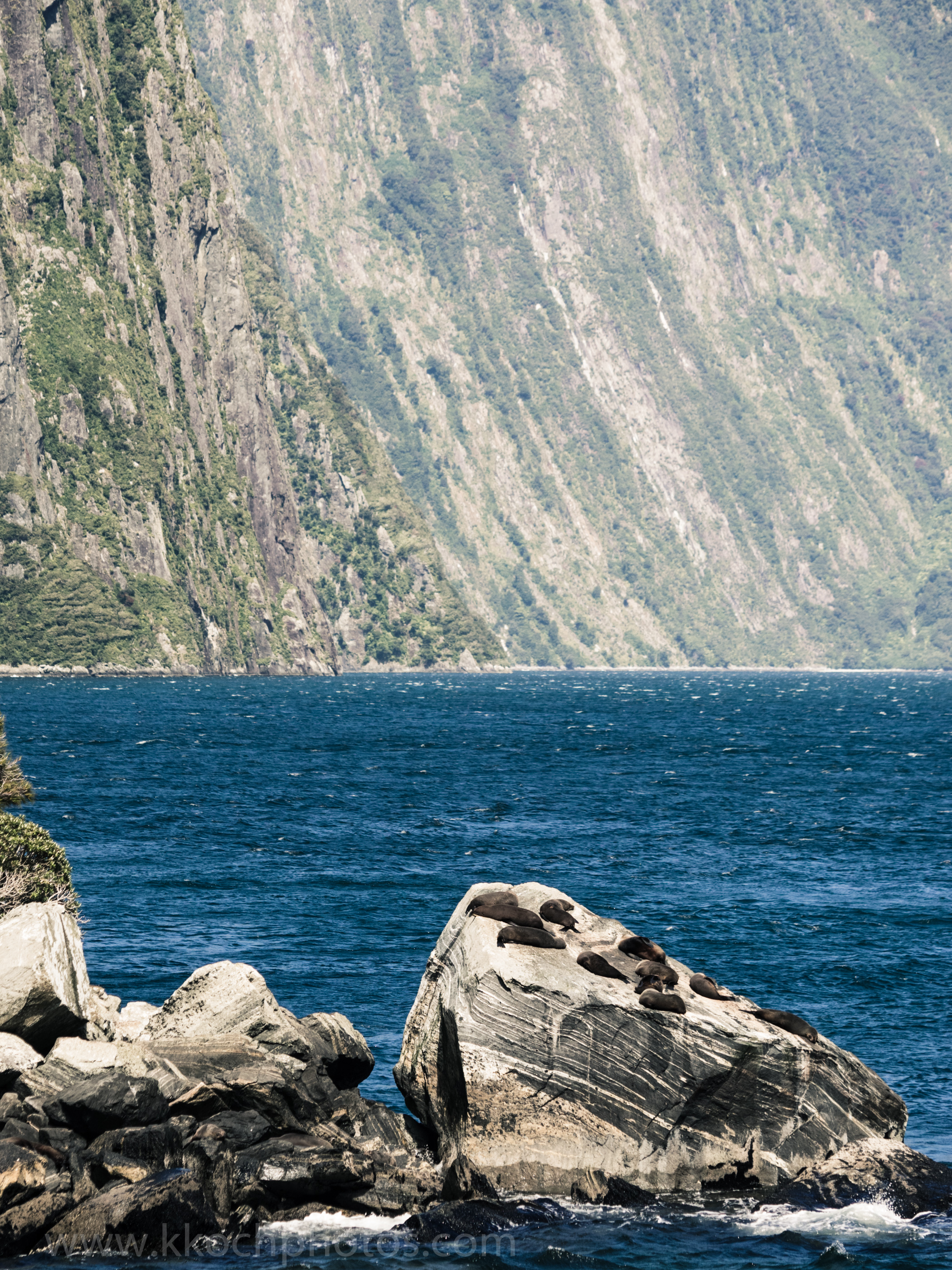 look at the fiord walls! They were cut by glaciers many years ago