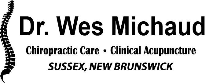 Dr.WesMichaud logo.jpg