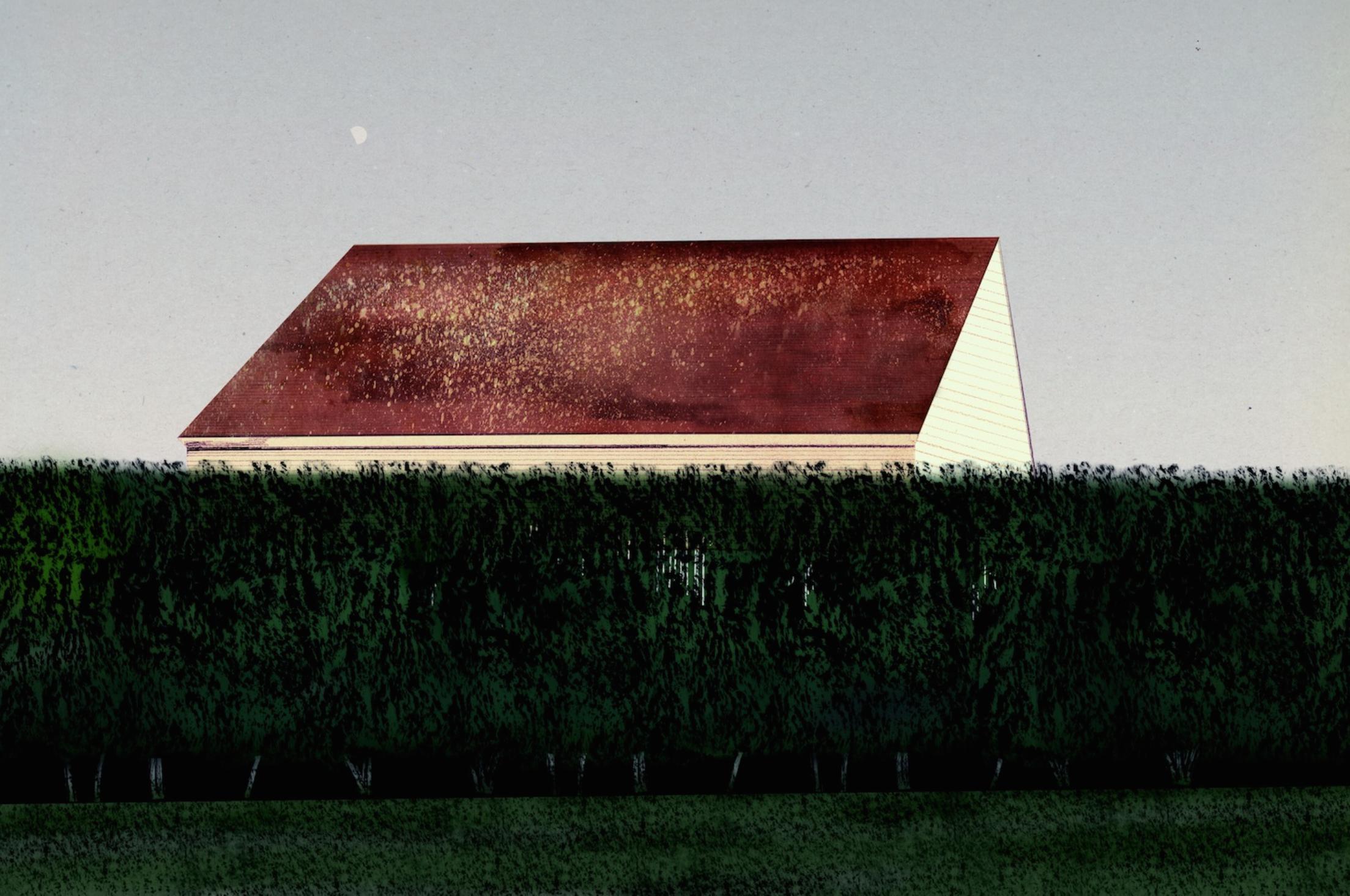 Illustration: Olof  Svenblad based on photo by Emily Cross.