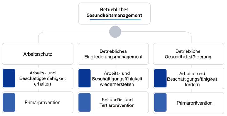 Säulen des Betrieblichen Gesundheitsmanagements, RPC Consulting GmbH