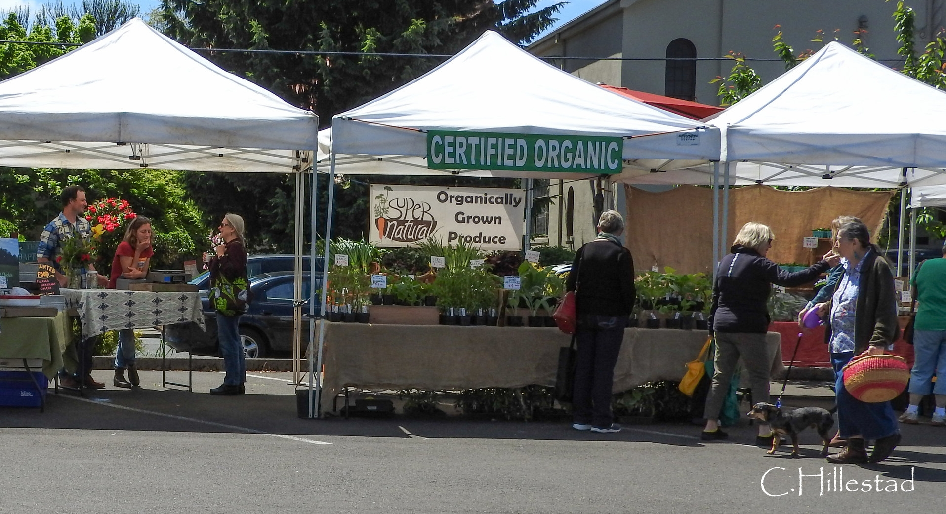 CharlesHillestad_New Farmers Market_May 2017-75.jpg