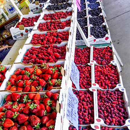 Sweet Oregon Berry.jpg