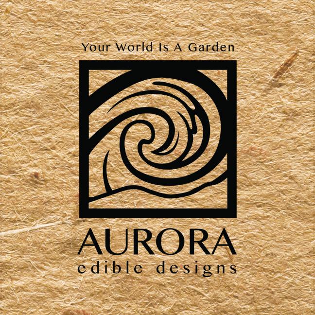 Aurora3.jpg