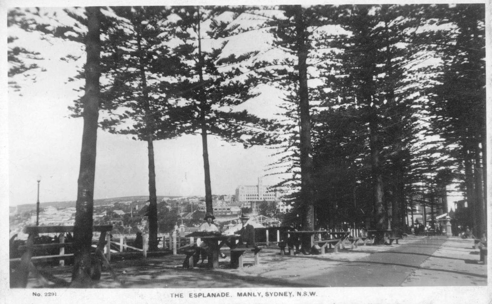 North Steyne reserve, c1920s.jpg