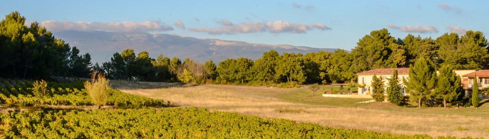grangeneuve-provence-rental-6577.jpg