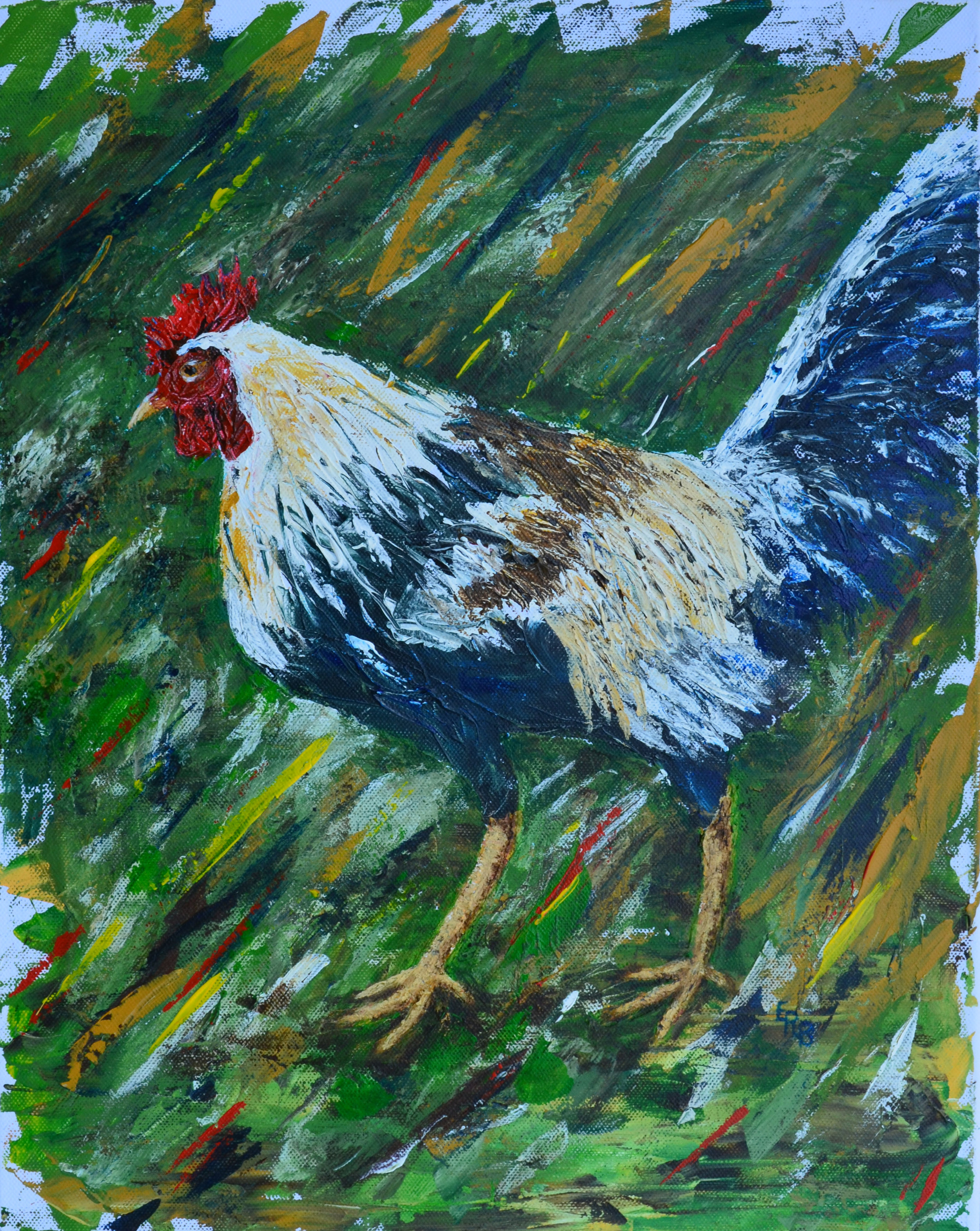 Gallo (Rooster)