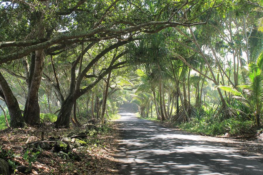 red-road-coastline-02-hawaii-adventure-uncleianshawaii.jpg