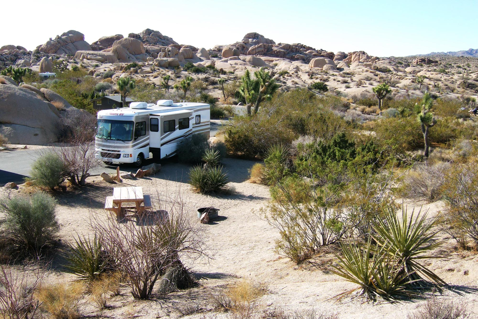joshua-tree-national-park (1).jpg