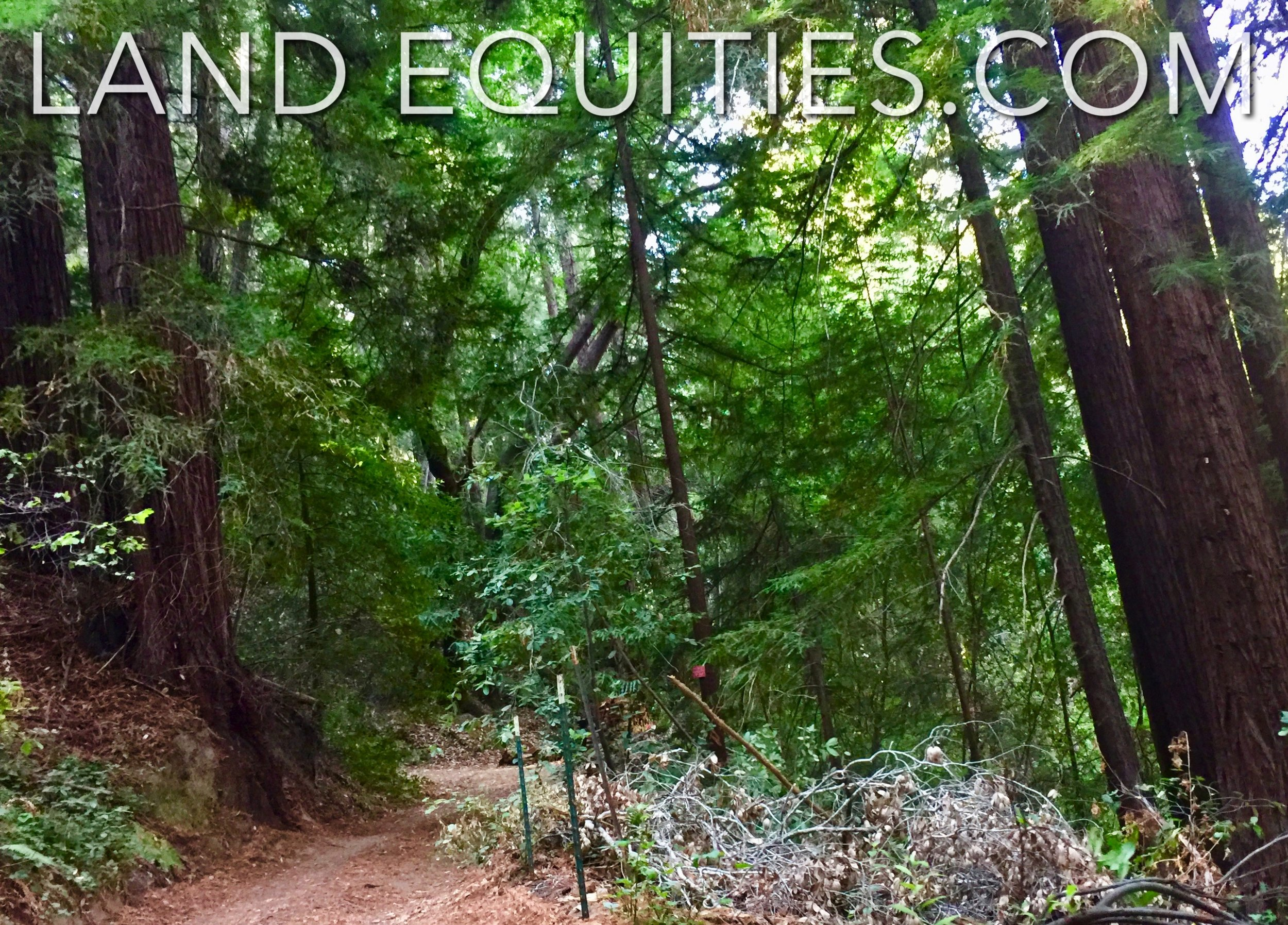 LAND EQUITIES — SECLUDED 1 6 ACRE PARADISE IN THE REDWOODS, SCENIC DR   BOULDER CREEK, CA