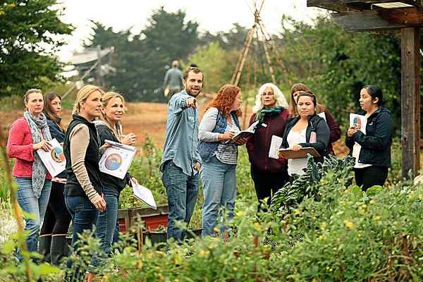 Garden-based lab teaches nutrition education. Santa Cruz Sentinel . Oct. 14, 2016