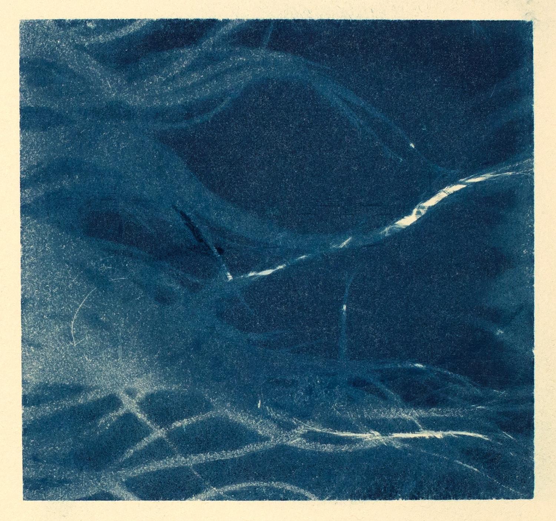 hair  (study I), 2016, cyanotype, 32 x 24 cm