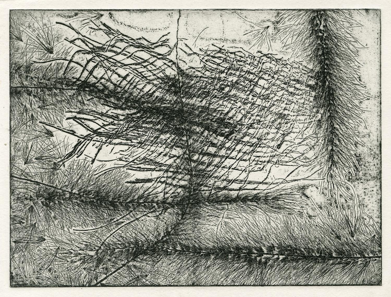 one plate  studio test I, 2015, zinc etching on Hanhnemuhle, 15 x 20 cm