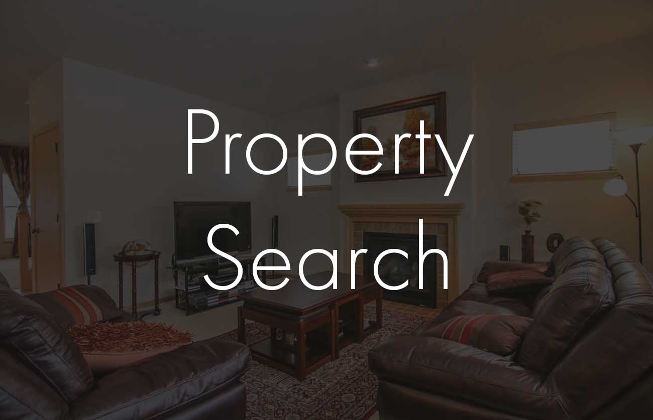 property search-button.jpg