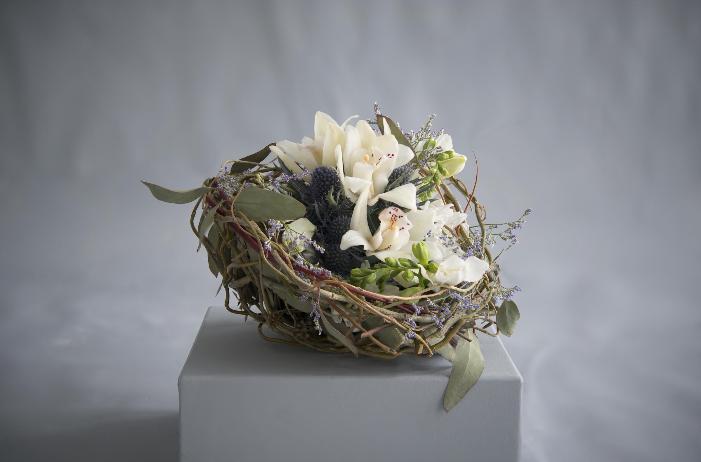 Bird Nest Design.jpg