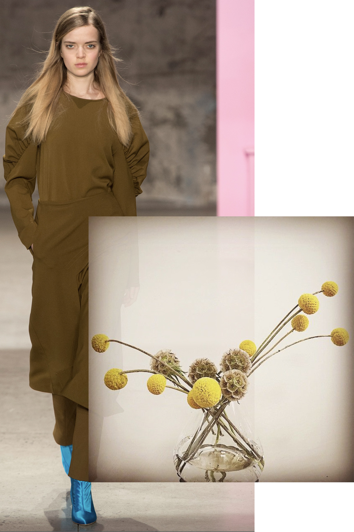 Tibi paired with Scabiosa pods