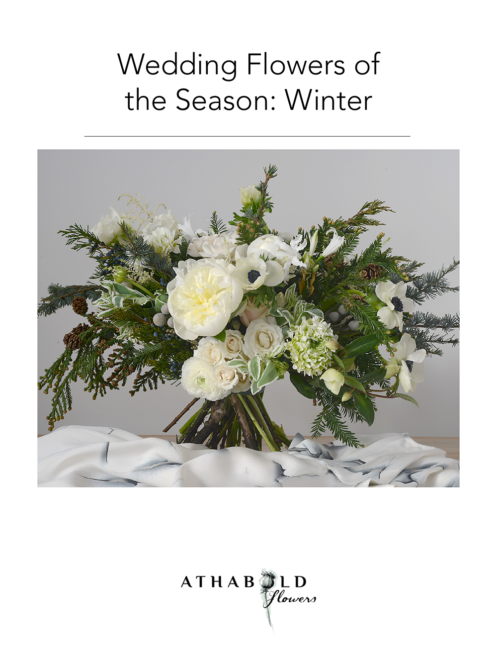 Seasonal Flowers_Winter.png