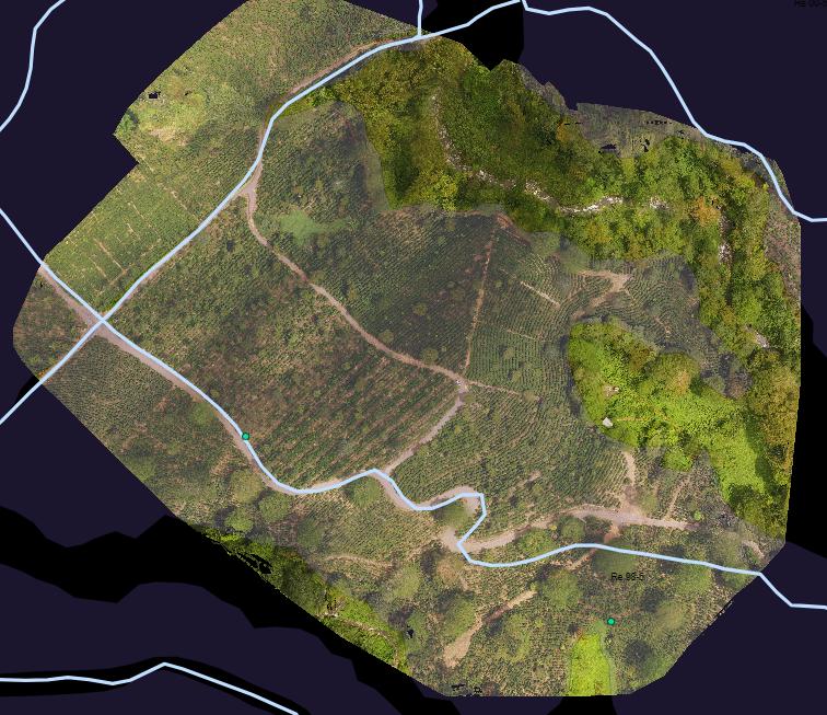 area (D)y zonas: jardin de variedades