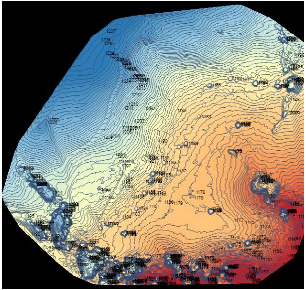 DSM:Modelo Digital de Superficie - Describe las variaciones en la elevación de la parte superior del paisaje, incluyendo la altura de la vegetación, infraestructura y otros elementos de la superficie, y solo provee elevaciones del terreno en aquellas zonas donde hay muy poca o ninguna cobertura sobre el suelo.En este reporte, esta representado con la escala de Azul (mas alto) a Rojo (mas bajo).