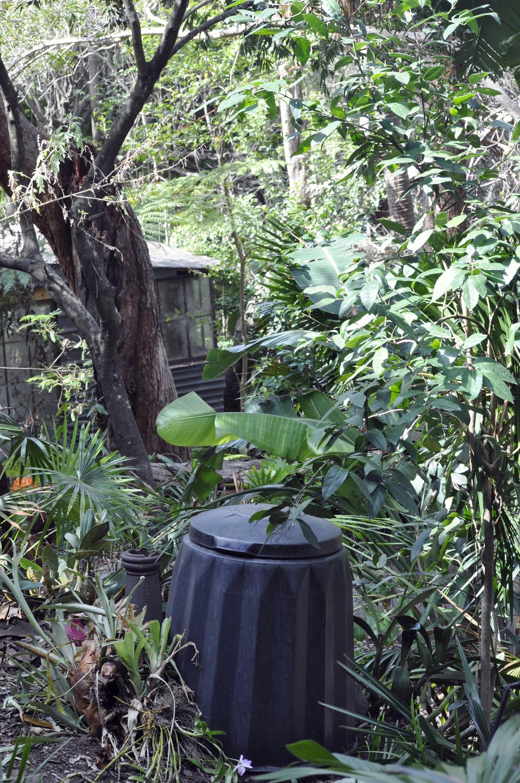 Garden#4.jpg