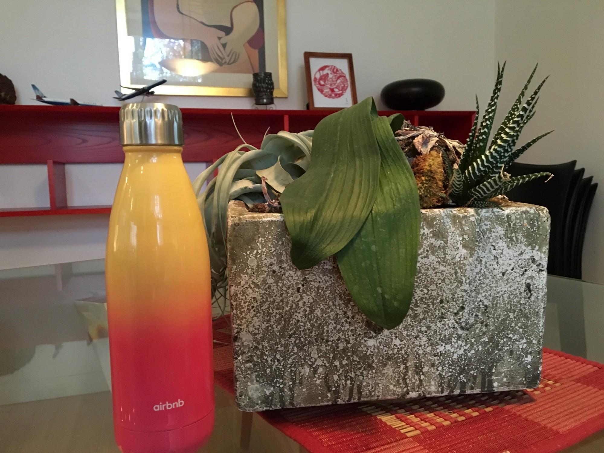 s'well yogi water bottle ($35 /bottle)