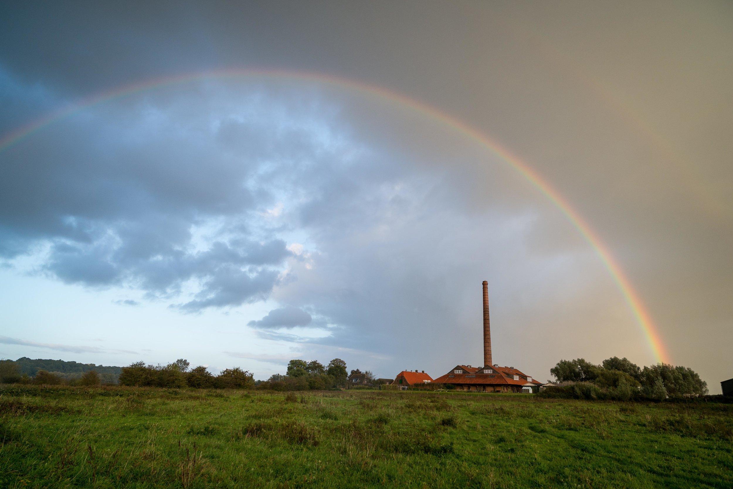 Bovenpolder in Wageningen met zicht op de voormalige steenfabriek 'De Bovenste Polder'. Tot vorig jaar werd er jaarlijks in dit gebied gebroed door de kwartelkoning. (Foto: Sjoerd Schimmel)