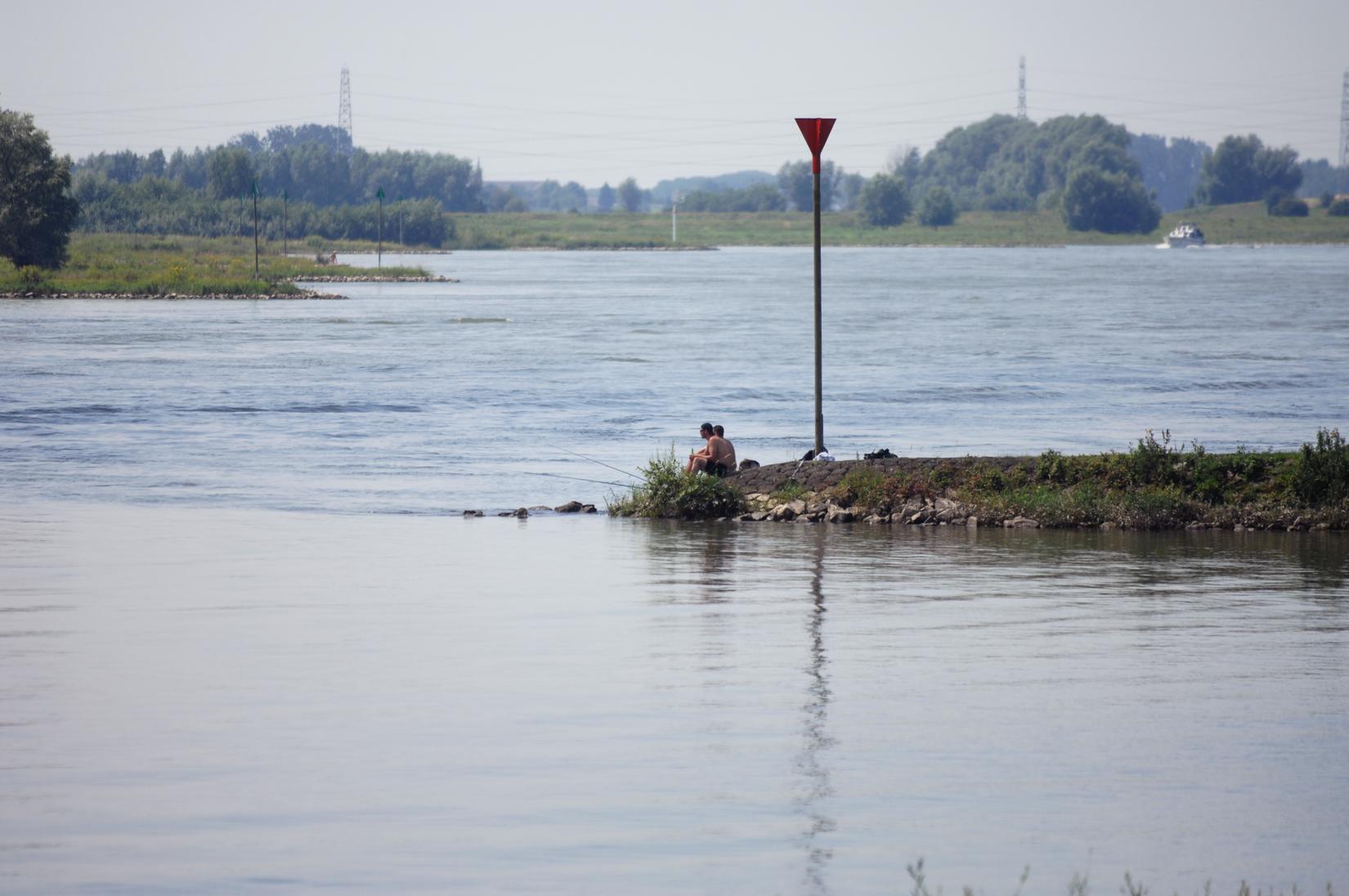 Foto: Beelbank Rijkswaterstaat, Con Mönnich