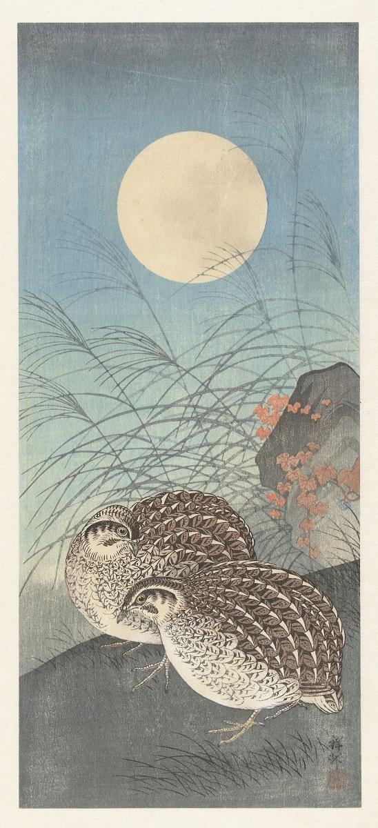 Twee kwartels bij volle maan, Ohara Koson, uit 1900-1936. Studio Rijksmuseum