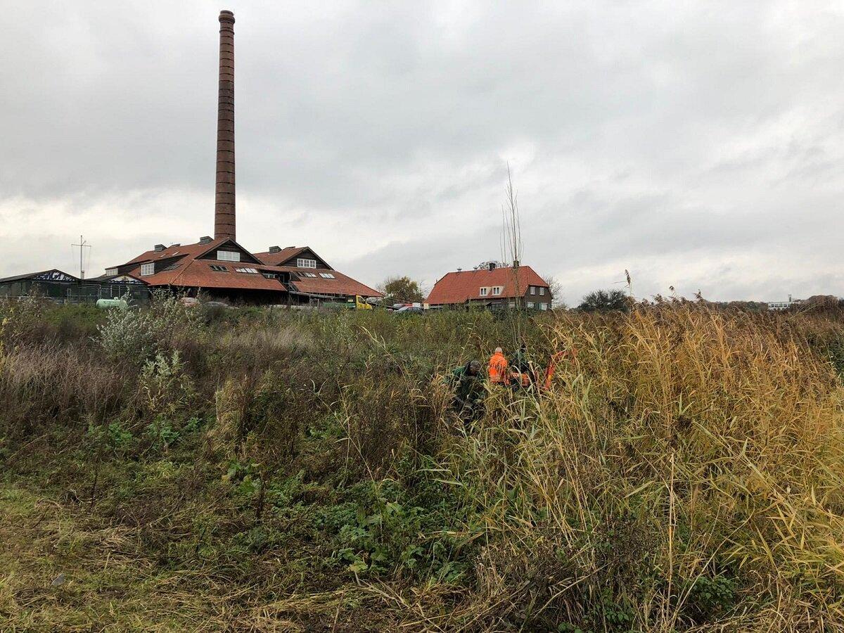 Aanplant van een zwarte populier bij steenfabriek de Bovenste Polder. Foto: Mooi Wageningen