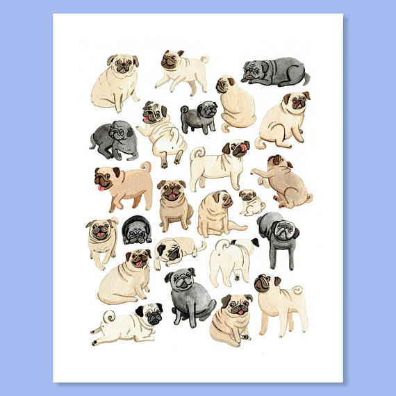 My (Catherine) favorite kind of party is a pug party so you can count me  in  with this adorable print!