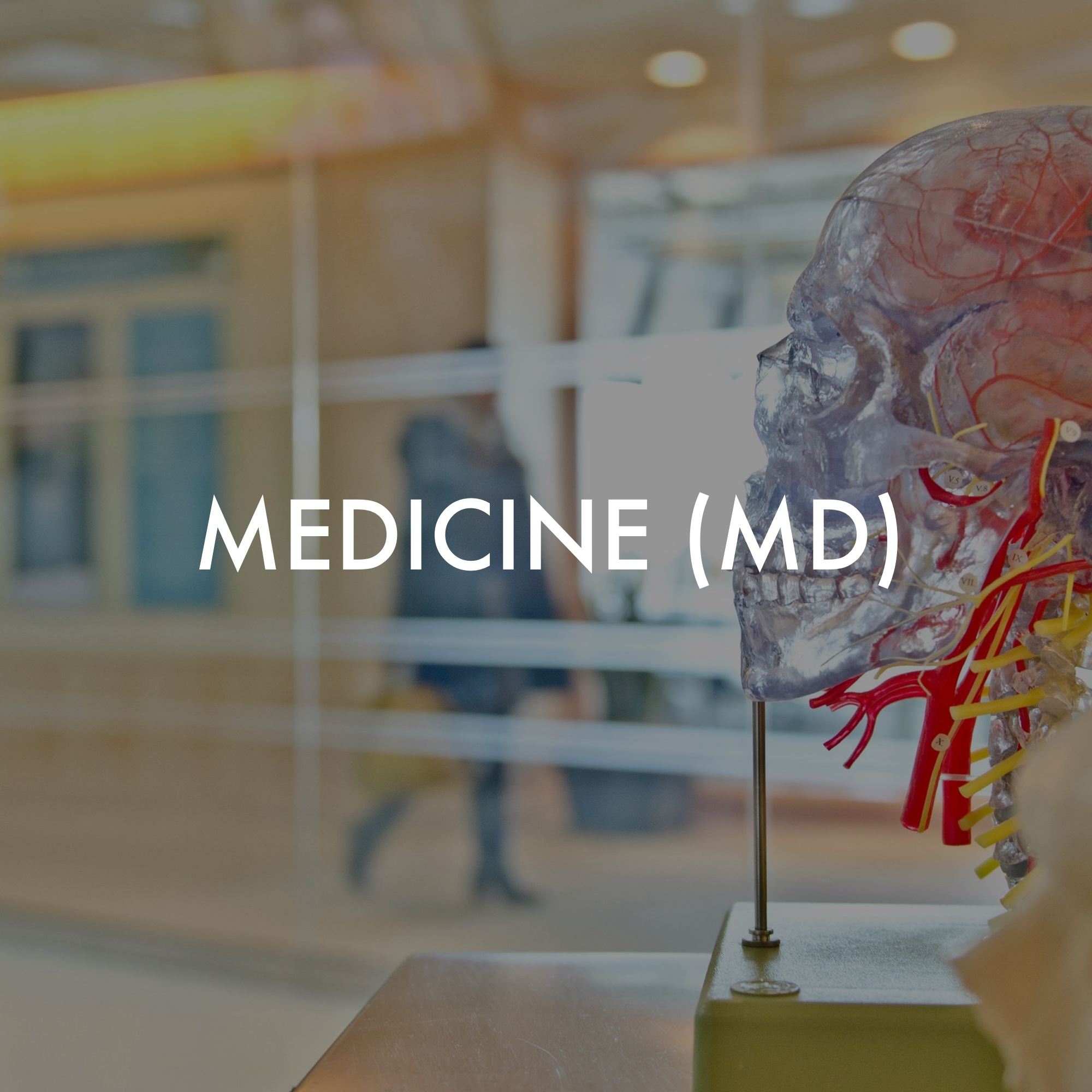 Apply Point Medicine Image.jpg