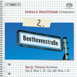 RB - Beethoven- Complete Works for Solo Piano Vol 2.jpg