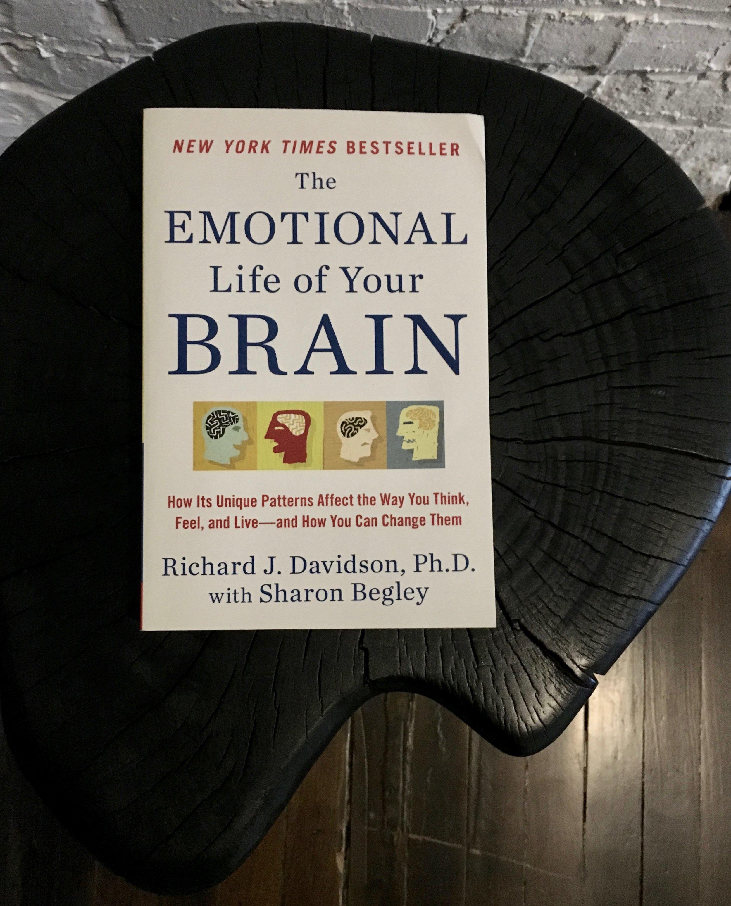 richard_davidson_meditation_book_chill_chicago_mini.jpg