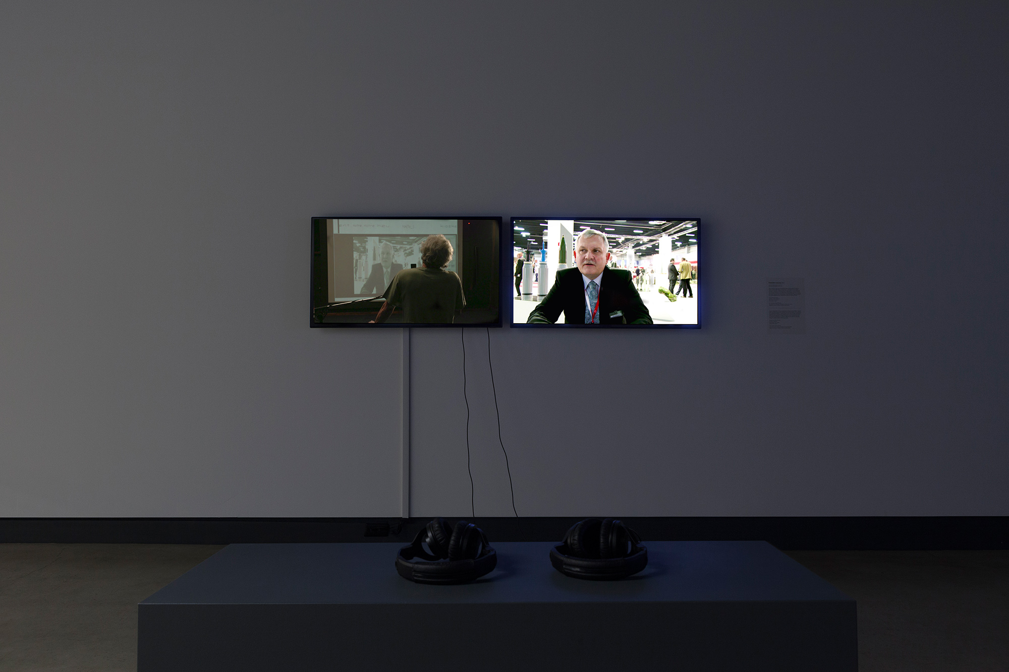 © Gabriela Löffel,  Embedded Language  (2013). Exhibition view. Photo: Marilou Crispin.