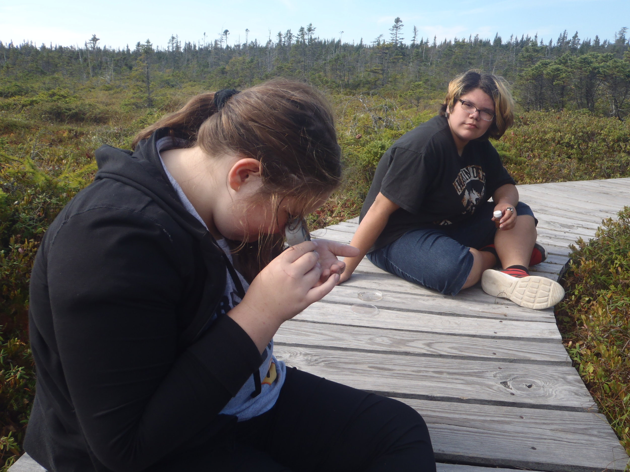 Students gathering data at West Quoddy