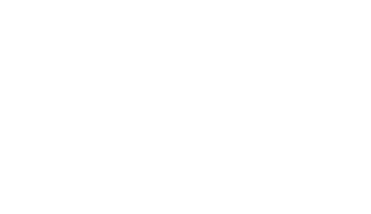Copy of Elfenworks Foundation