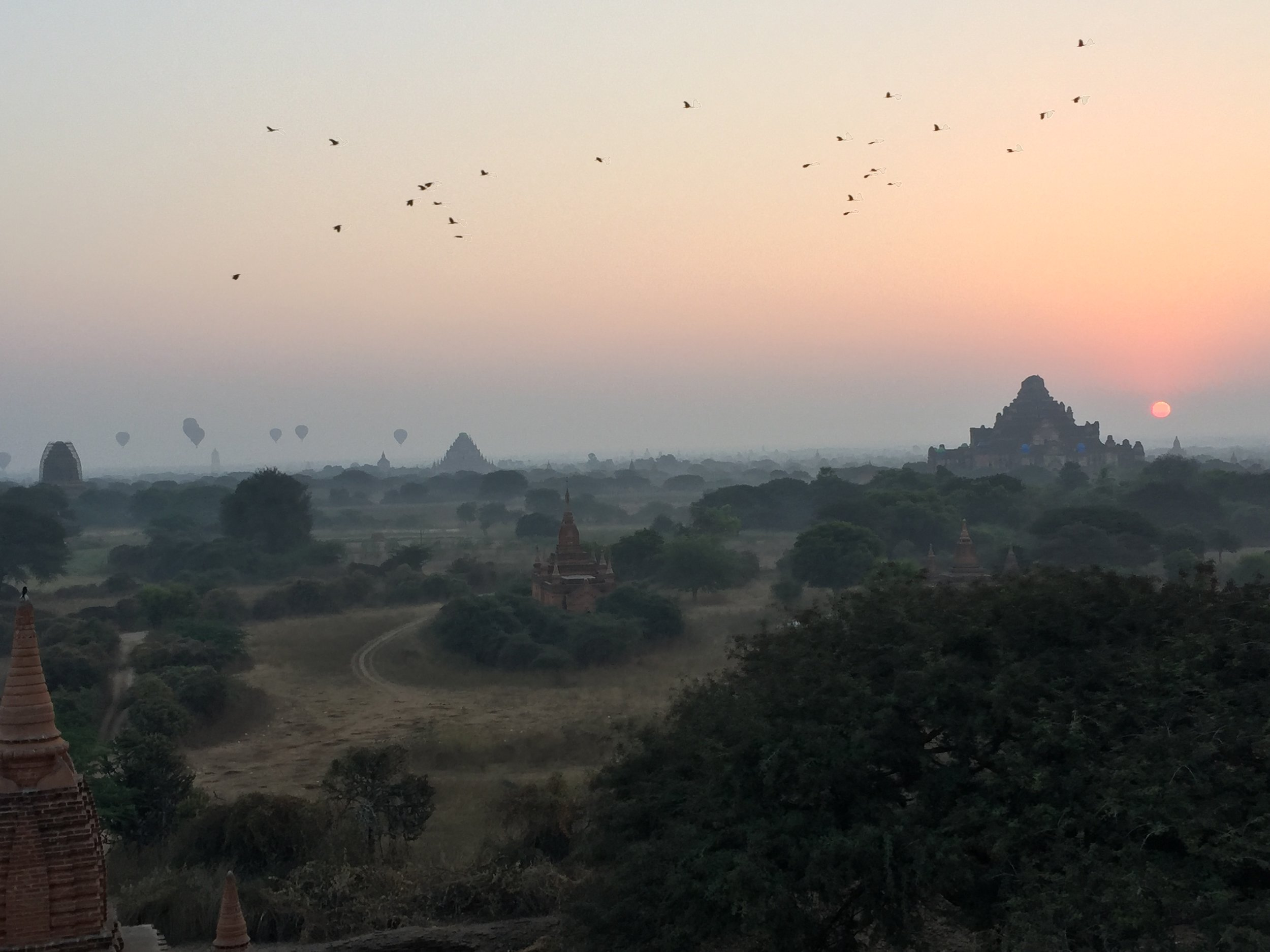 Birds fly by the hot air balloon sunrise over Bagan.