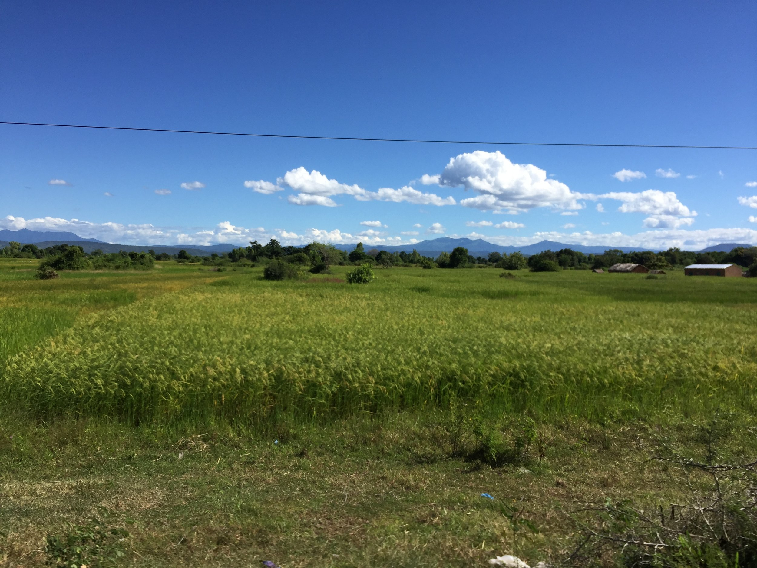 The rolling hills and fields of Malawi are a beautiful bright green - untouched by anyone but farmers.