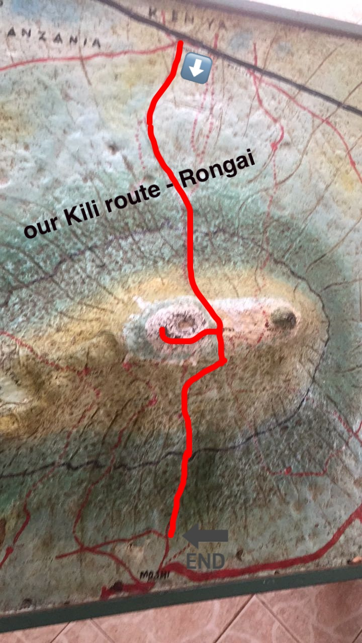 Rongai is one of the few routes to start from the Kenya side.