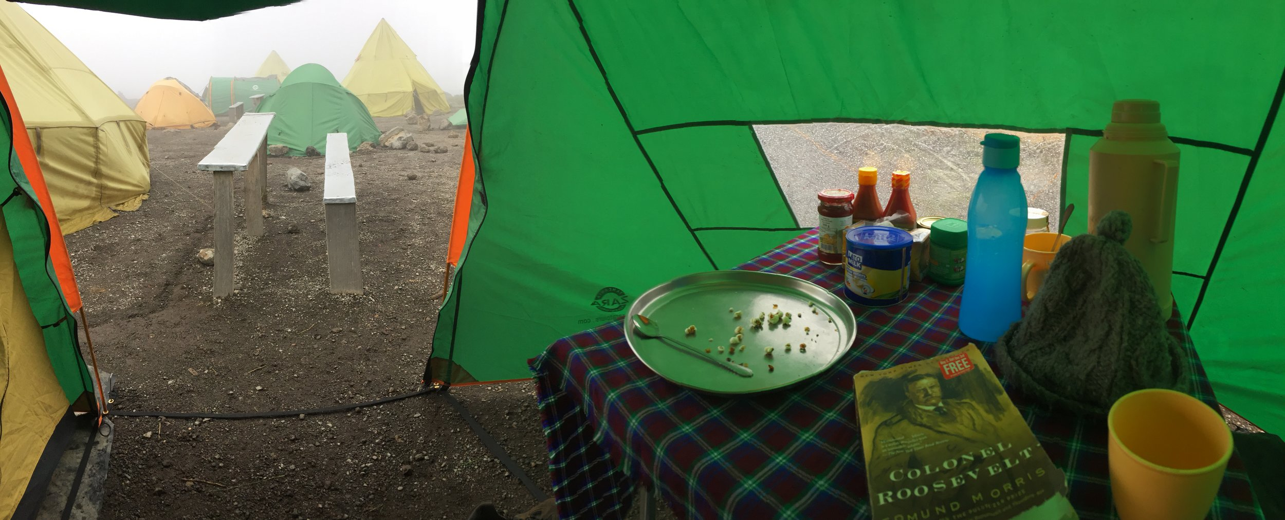 """The view from my tent's """"patio,"""" under the rain cover."""
