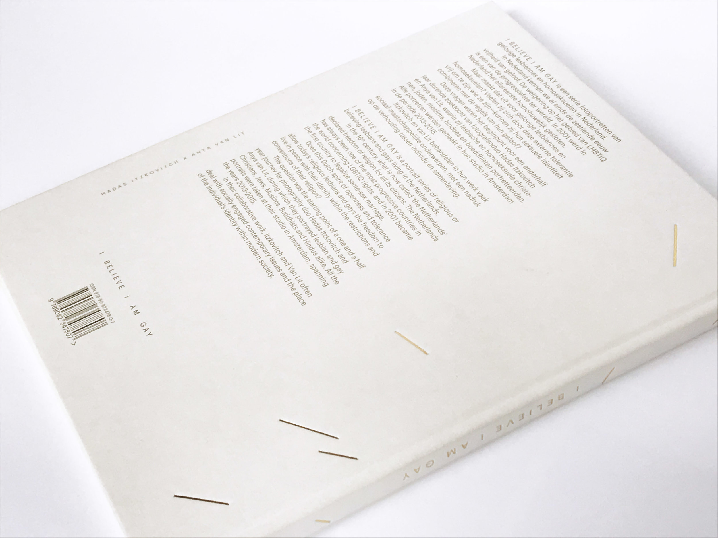 IBIAGbook6.jpg