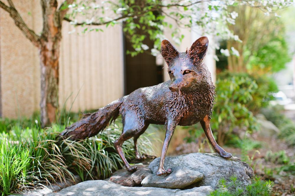Grace fox_0491 copy.jpg