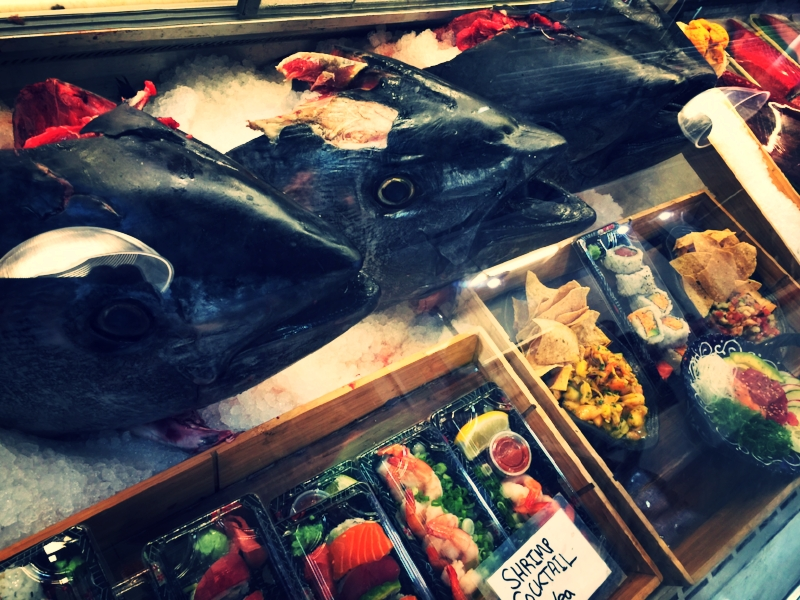 tuna head collar liberty station public market san diego joshua david becausehouse realtor
