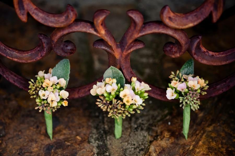 lillie jane birmingham groom