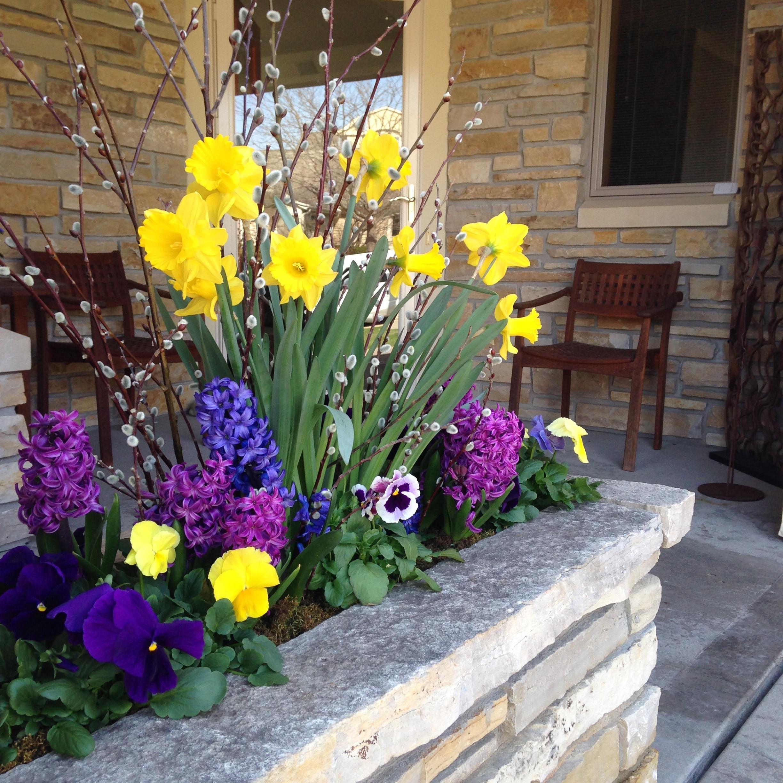 Spring flowers container design at schönheit gardens in madison, wi.