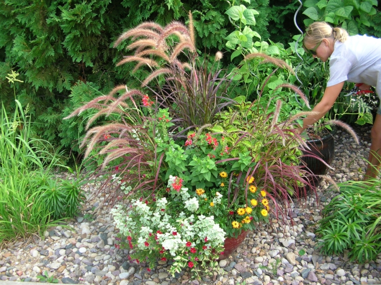 Summer annual flower container blog post from Schonheit Gardens in Sun Prairie, Wisconsin near Madison.