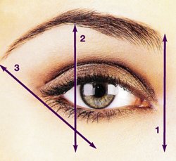 Some common    errors to look out for:     Eyebrows to close  Eyebrows too far apart  Eyebrows too bushy  Eyebrows too thin  Eyebrows arched too high