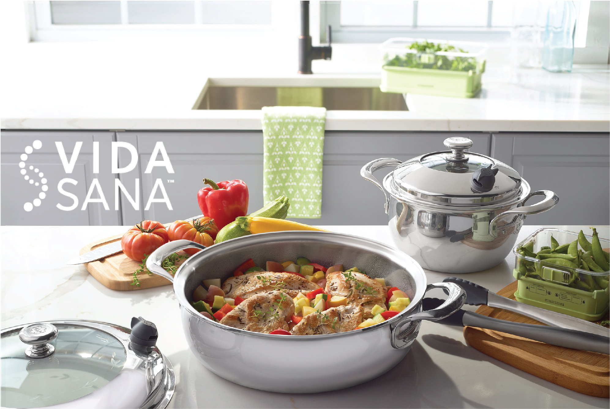 Vida-Sana Product Development