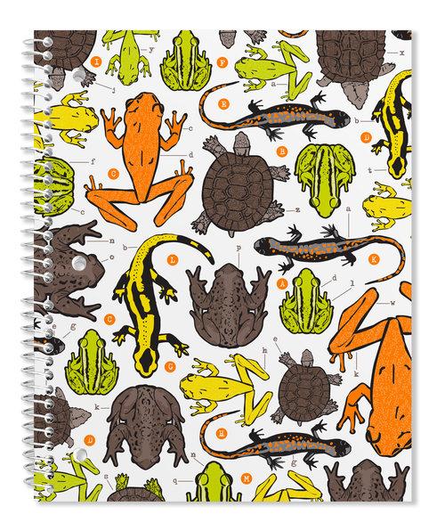 spiral-binder-frogs.jpg